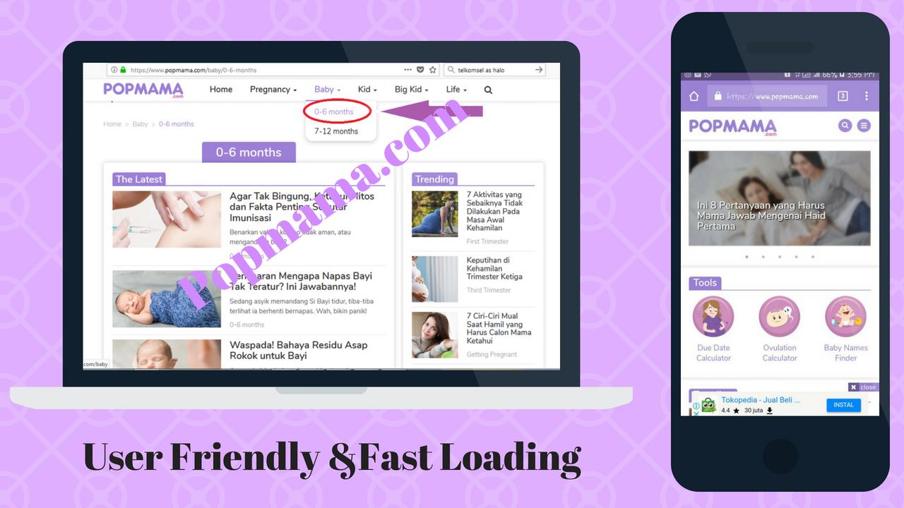 User Friendly & Fast Loading