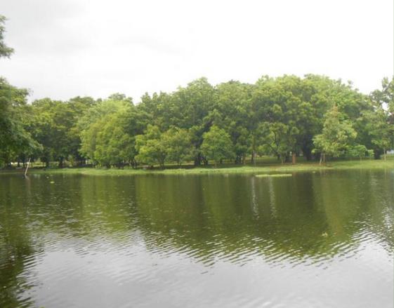 kampus yang memiliki danau cantik