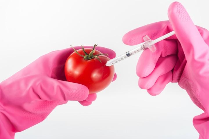 Pengembang produk makanan